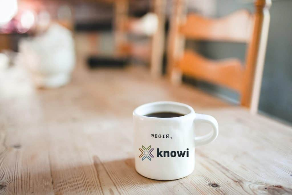 Getting Started With Knowi